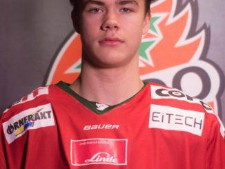 William Wallinder: 10 Facts on Swedish Ice Hockey Player
