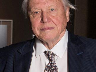 Robert Attenborough