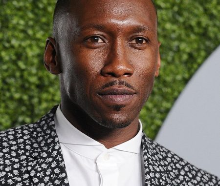 Mahershala Ali Between The World And Me HBO: 10 Facts To Know About