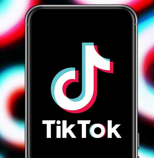 What Do You Meme Rules: How To Play What Do You Meme On TikTok?