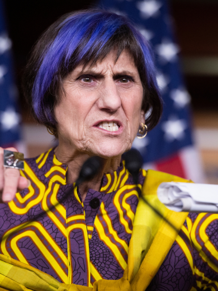 Rosa DeLauro Net Worth And Husband: Facts To Know About