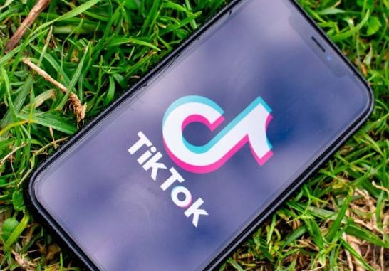 What Is 'Matching Bios For Couples' TikTok Trend? Everything On New Viral Trend