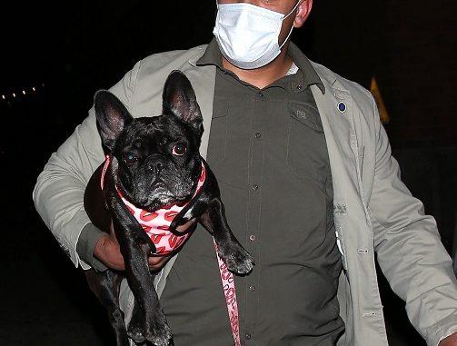 Ryan Fischer: Who is : Lady Gaga's Dogwalker? Health Update