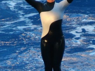 How Did Seaworld Dawn Brancheau Died? Photos And Videos Released