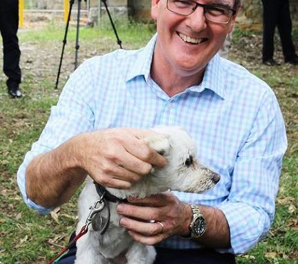 Who is Michael Daley? Everything To Know About The Politician