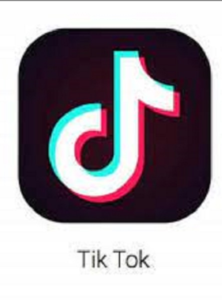 Art of the Zoo Tiktok Meaning And Website – What Is Art Of The Zoo?