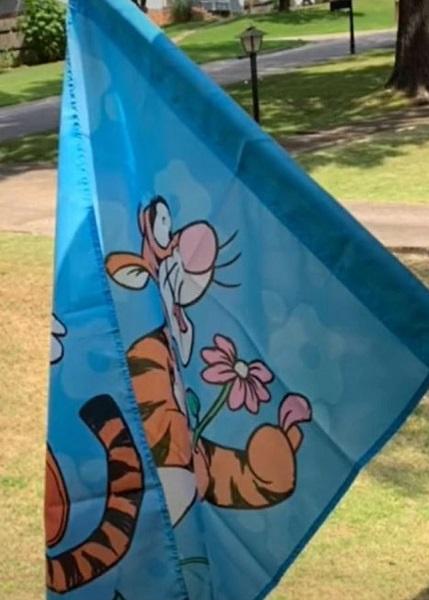 Karen Alert – What Is A Tigger Flag On TikTok?