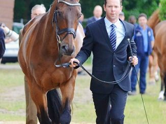 Who Is Equestrian Kevin Mcnab? Wife And Family Details