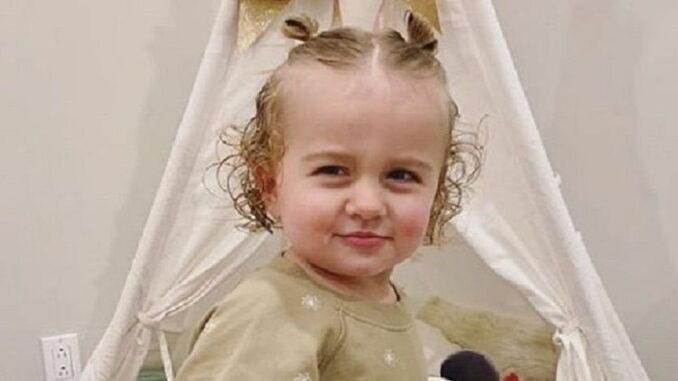 Birdie Joe Danielson - Inside the Life of Brie Bella's Daughter